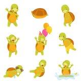 Grupo de tartaruga verde bonito no réptil engraçado das ações diferentes com shell marrom Ícones lisos isolados do vetor ilustração do vetor