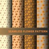 Grupo de teste padrão de flor abstrato ilustração royalty free