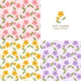 Grupo de teste padrão de flor sem emenda Imagens de Stock Royalty Free