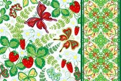 Grupo de teste padrão floral da tração sem emenda da mão com morango e borboleta e beira sem emenda (tira da fita da faixa da fit Imagem de Stock