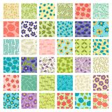 Grupo de 36 testes padrões florais sem emenda Foto de Stock Royalty Free