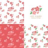 Grupo de testes padrões de flores vermelhos sem emenda Foto de Stock Royalty Free