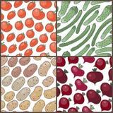 Grupo de testes padrões sem emenda com vegetais: tomates ilustração royalty free