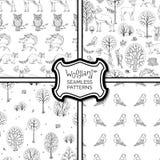 Grupo de testes padrões sem emenda da floresta do outono das garatujas Imagens de Stock Royalty Free