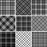 Grupo de testes padrões sem emenda da tartã Fotos de Stock Royalty Free