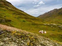 Grupo de tiendas en valle de la montaña, otoño en Alaska fotografía de archivo