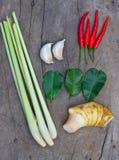 Grupo de tom yum (alimento tailandês) foto de stock