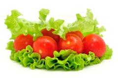 Grupo de tomate e de salada verde no fundo branco imagens de stock royalty free