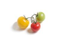 Grupo de tomates coloridos imagem de stock