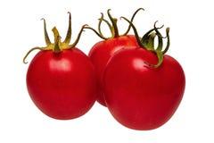 Grupo de tomates em um fundo branco fotos de stock royalty free