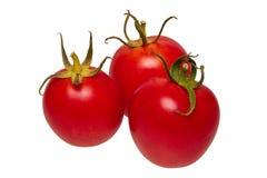 Grupo de tomates em um fundo branco imagem de stock royalty free