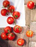 Grupo de tomates frescos com gotas da água Fotos de Stock Royalty Free