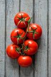 Grupo de tomates maduros Fotografía de archivo