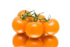 Grupo de tomates maduros em um fundo branco com reflexão Fotografia de Stock Royalty Free