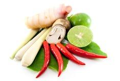 Grupo de Tomyum (alimento tailandês) imagem de stock