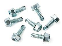 Grupo de tornillos para el metal Fotografía de archivo