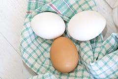 Grupo de três ovos no pano colorido Imagem de Stock