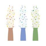 Grupo de três vasos com flores Foto de Stock