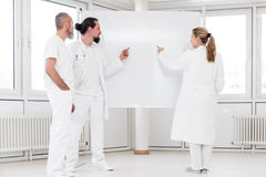 Grupo de trabalhadores médicos Fotografia de Stock Royalty Free