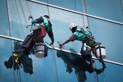 Grupo de trabalhadores que limpam o serviço das janelas na construção alta da elevação Fotografia de Stock Royalty Free