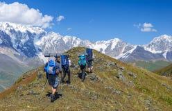 Grupo de trekkers en las montañas del verano Fotografía de archivo