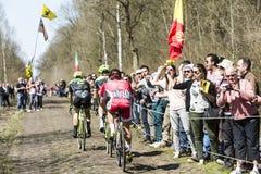Grupo de tres ciclistas en el bosque de Arenberg- París Roubaix Imágenes de archivo libres de regalías