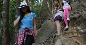 Grupo de turistas con las mochilas que emigran cuesta abajo a través de árboles en el bosque, gente joven en alza metrajes