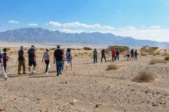 Grupo de turistas que caminham no deserto Fotografia de Stock Royalty Free