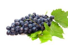 Grupo de uva. Foto de Stock
