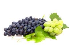 Grupo de uva. Imagem de Stock