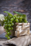 Grupo de uvas Imagens de Stock
