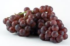 Grupo de uvas Imagem de Stock Royalty Free