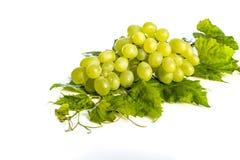 Grupo de uvas e das folhas verdes no fundo branco Foto de Stock Royalty Free