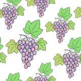 Grupo de uvas em um fundo Um teste padrão extravagante Apropriado como o papel de parede na cozinha e o fundo para o papel de emb ilustração royalty free