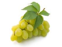 Grupo de uvas frescas com a folha isolada no branco Fotografia de Stock Royalty Free