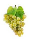 Grupo de uvas frescas e das folhas isoladas no branco Fotos de Stock Royalty Free
