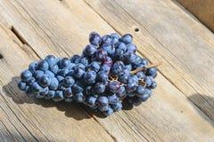 Grupo de uvas pretas da tabela na vida ainda Fotografia de Stock