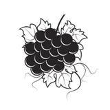 Grupo de uvas preto e branco ilustração royalty free