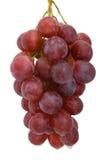 Grupo de uvas vermelhas Foto de Stock Royalty Free