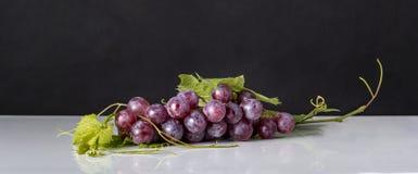 Grupo de uvas vermelhas com folhas e fundo escuro Imagem de Stock