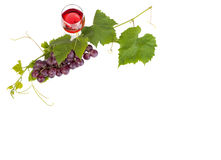 Grupo de uvas vermelhas e de folhas e de vidro de vinho tinto no fundo branco Imagens de Stock Royalty Free