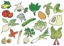Grupo de vegetais da cor Imagens de Stock Royalty Free