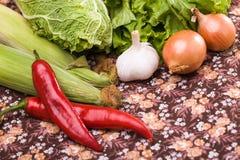 Grupo de vegetais de cozimento crus Imagem de Stock Royalty Free