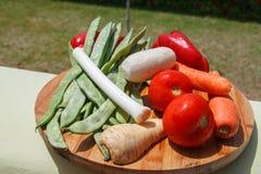 Grupo de vegetais & de x28; tomates, alho-porros, aipo, vegetables& x29 da raiz; FO Imagem de Stock