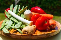 Grupo de vegetais & de x28; tomates, alho-porros, aipo, vegetables& x29 da raiz; FO Fotos de Stock Royalty Free