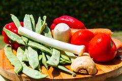 Grupo de vegetais & de x28; tomates, alho-porros, aipo, vegetables& x29 da raiz; FO Fotografia de Stock