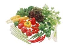 Grupo de vegetais isolados no branco Fotografia de Stock Royalty Free
