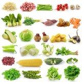 Grupo de vegetal fotografia de stock royalty free