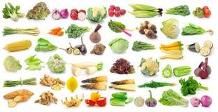 Grupo de vegetal no fundo branco Imagem de Stock Royalty Free