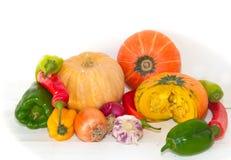Grupo de vegetales variados do jardim orgânico Imagem de Stock Royalty Free